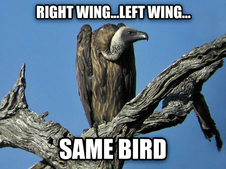 Image result for left wing right wing the same