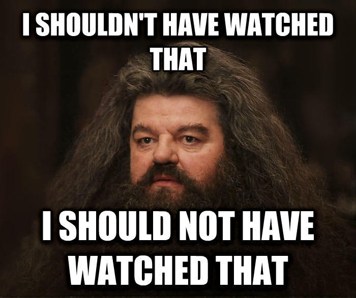 Image result for hagrid i shouldn't have watched that