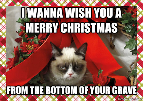 grumpy christmas cat i wanna wish you a merry christmas from the bottom of your grave - Merry Christmas Meme Generator